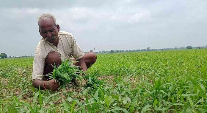 farmer welfare mission program